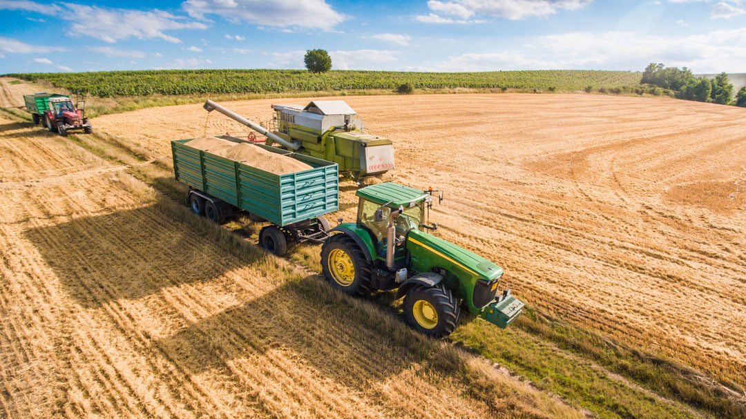 Tractor in field harvesting grain